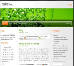 Fleshy 2  Wordpress Design